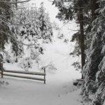 Ігри для зимового відпочинку на природі